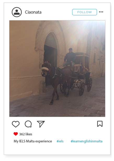 Mdina carriage