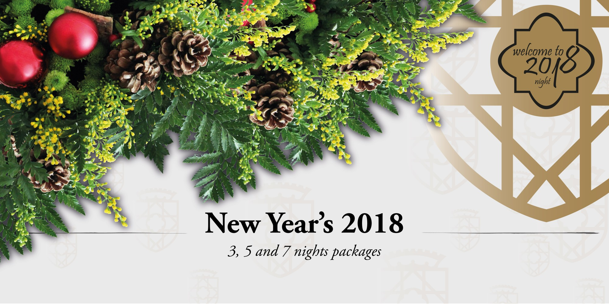 New Year's 2018 Packages