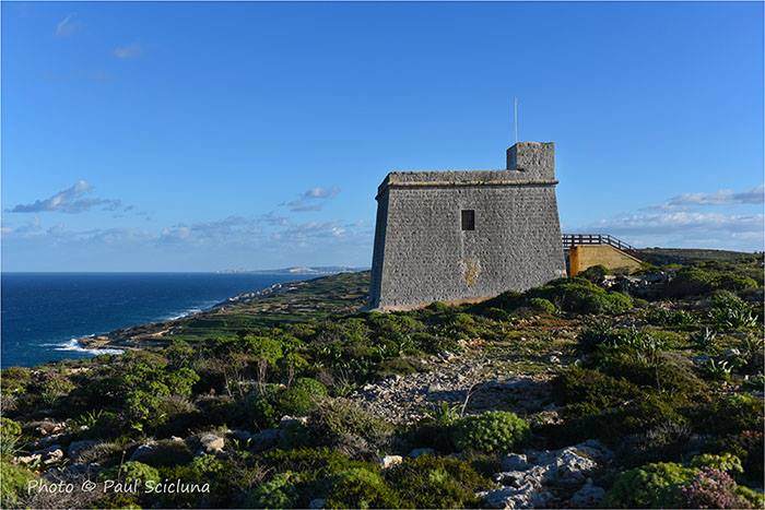 Gozo's Coastal Towers